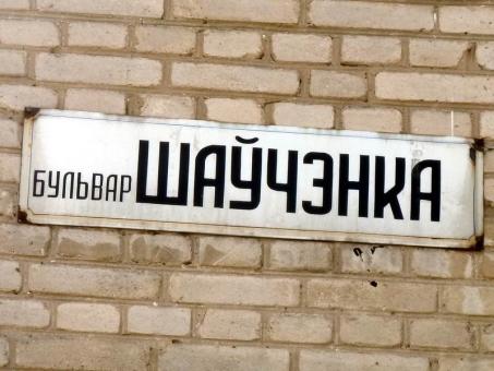 2011.05.08--p1070251_bul_shevchenka.jpg
